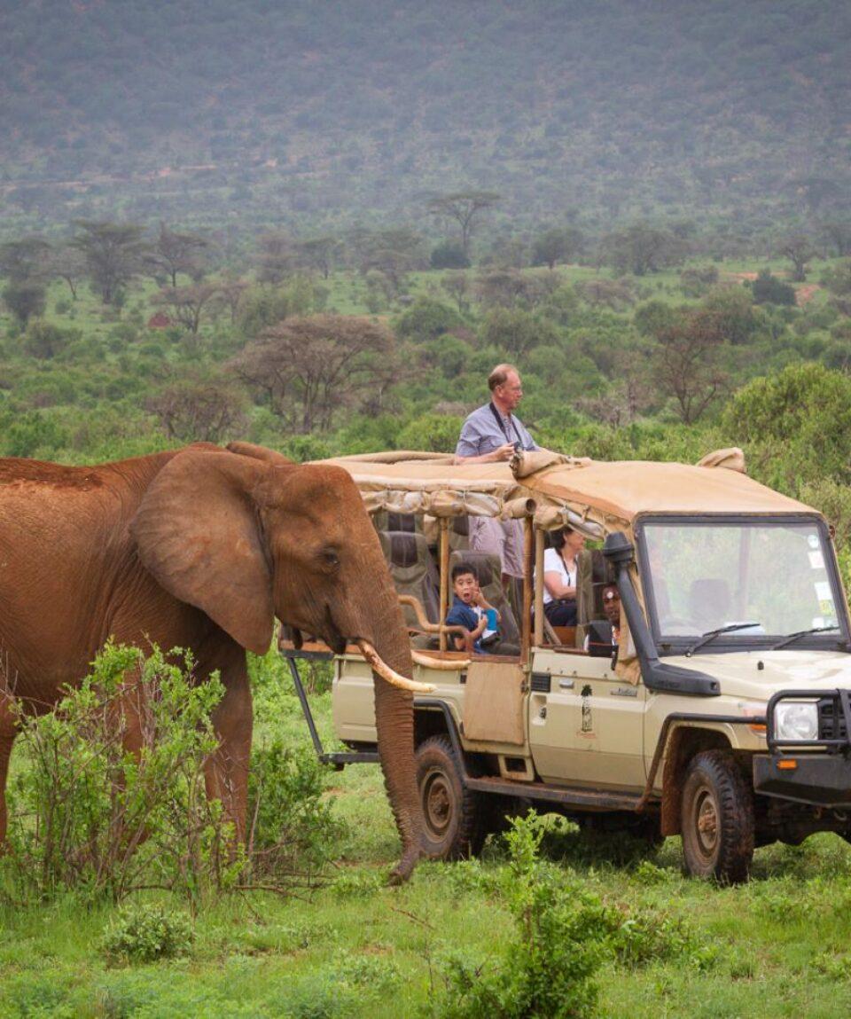 elephant_bedroom_camp_-_samburu_45_